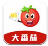 大番茄v3.1.0